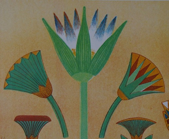 Ancient Egyptian lotus