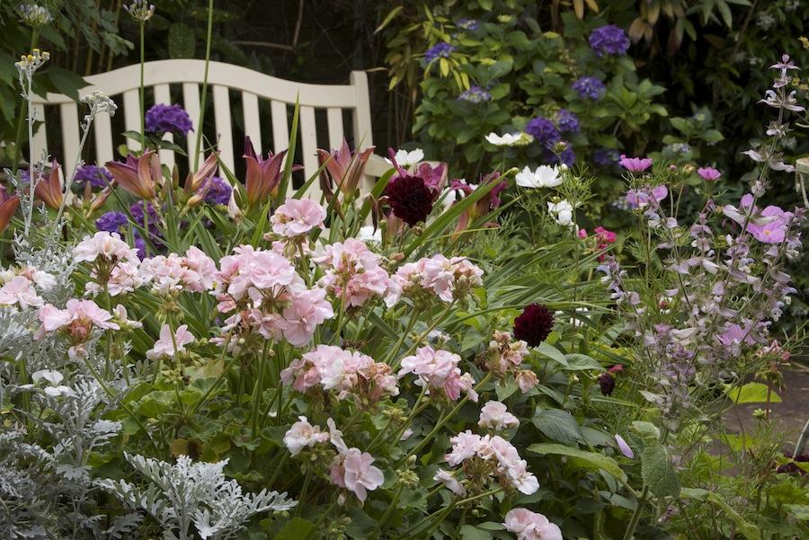 Summer-flower-garden