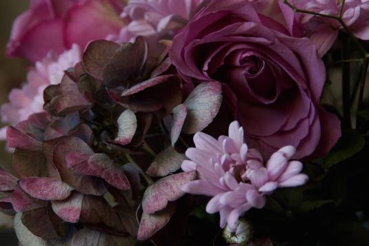 roses chrysanthemums